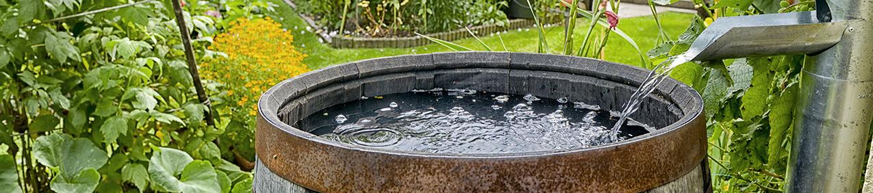 Water butt rainwater harvesting